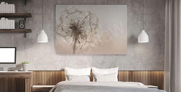 Obraz do sypialni dmuchawiec