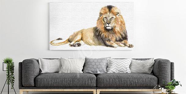 Obraz lew w trawie