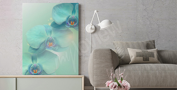 Obraz kolorowy storczyk