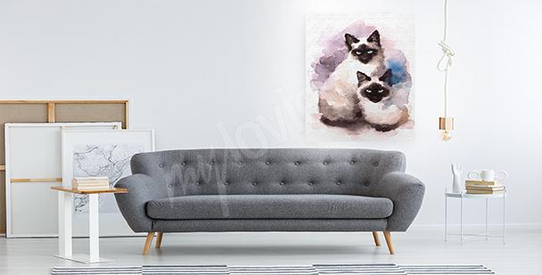 Obraz koty syjamskie