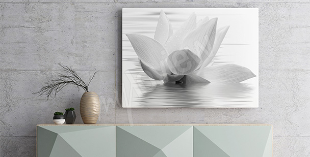 Obraz kwiat lotosu