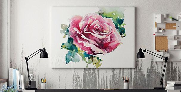Obraz kwiat róży akwarela