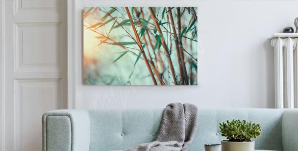 Obraz las bambusowy