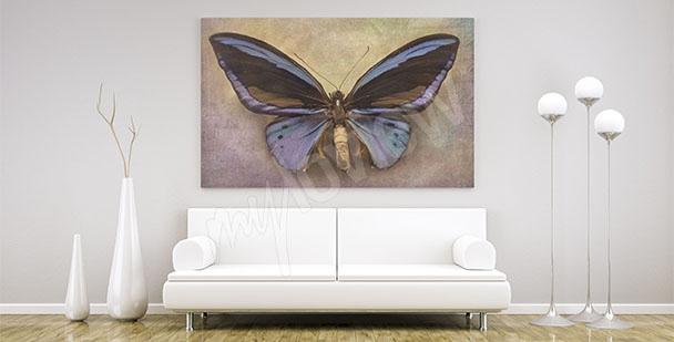 Obraz motyl minimalistyczny
