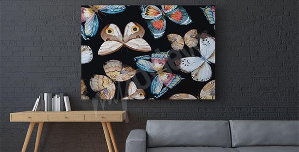 Obraz motyli na czarnym tle