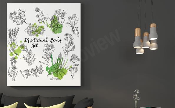Obraz natura zioła