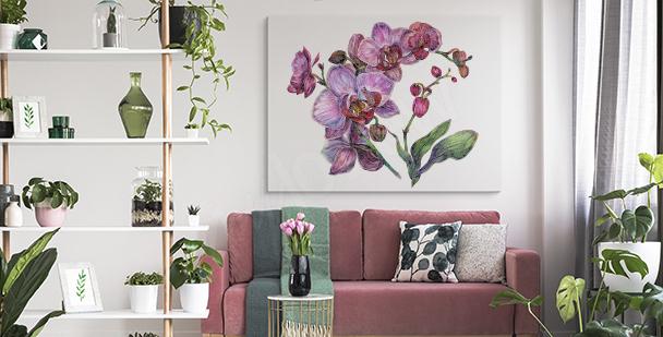 Obraz białe kwiaty orchidei