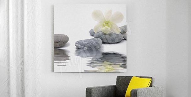 Obraz orchidea i kamienie