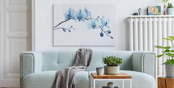 Obraz orchidea w akwareli