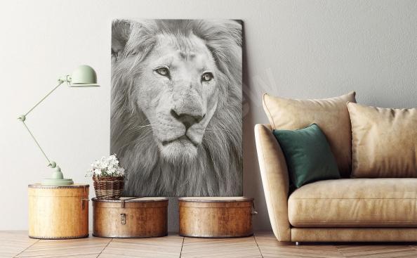 Obraz portret lwa w czerni i bieli