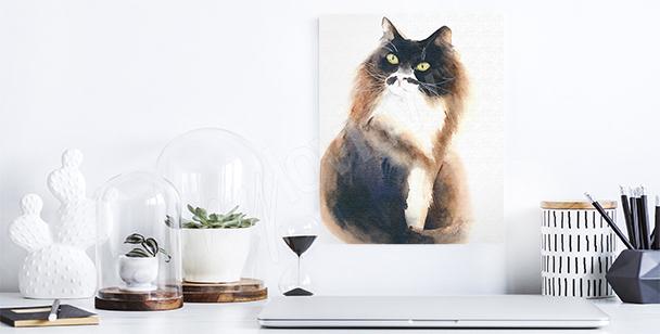Obraz puszysty kot