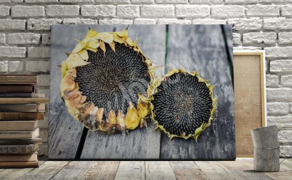 Obraz słoneczniki na deskach