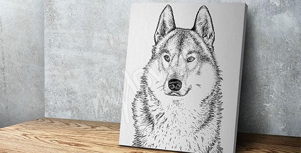 Obraz wilk czarno-biały