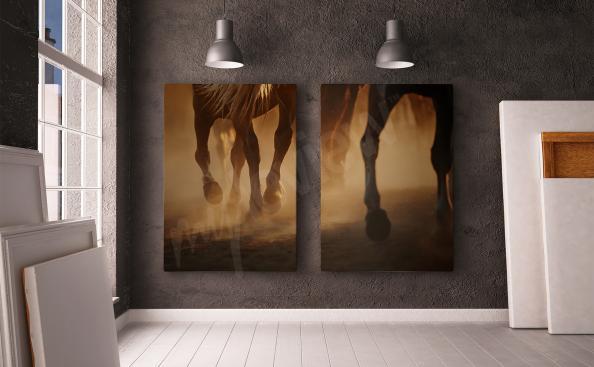Obraz z koniem dyptyk