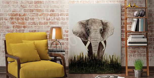 Obraz ze słoniem do salonu