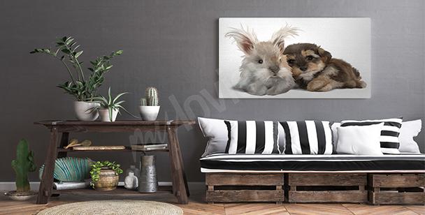 Obraz zwierzęta malowane akwarelą
