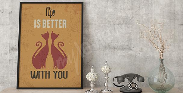 Plakat dwa koty