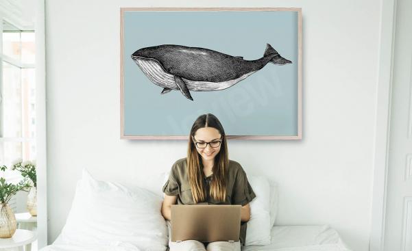 Plakat ilustracja wieloryba