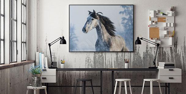 Plakat koń w zimowej aurze
