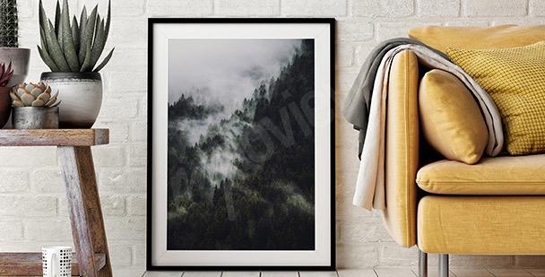 Plakat las i góry