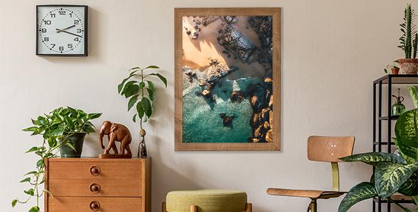 Plakat natura: liście monstery