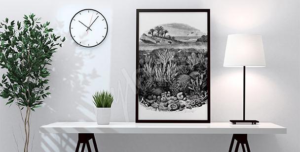 Plakaty Rafa Koralowa ścienne Na Wymiar Myloviewpl