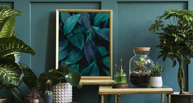Plakat roślinny – 8 wzorów polecanych przez Myloview