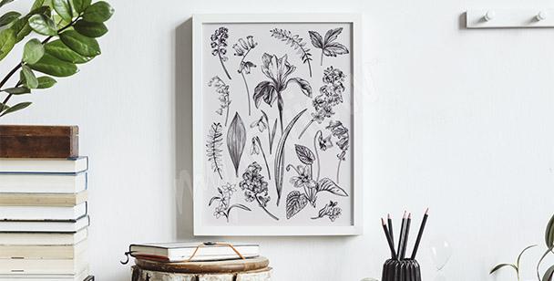 Plakat rysunek kwiatów