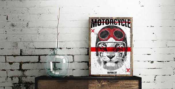 Plakat tygrys w kasku motocyklisty