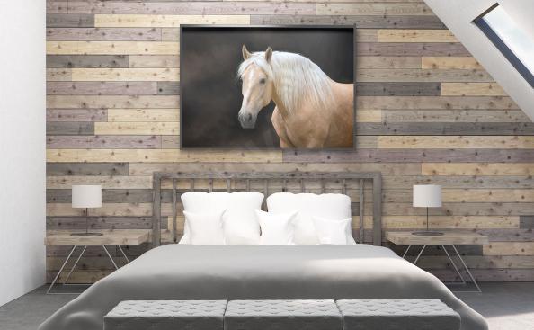 Plakat z białym koniem do sypialni