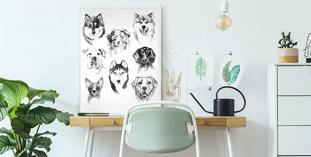 Plakat zwierzęta malowane akwarelą