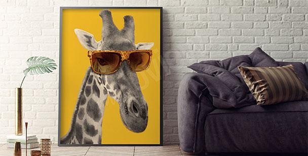 Plakat żyrafa w okularach