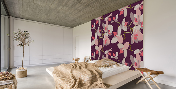 Tapeta storczyki na ścianie